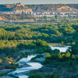 Río Cinca a su paso por Monzón